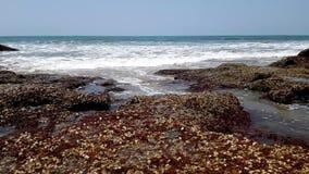 Timelapse της πετρώδους ακτής της αραβικής θάλασσας απόθεμα βίντεο