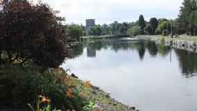 Timelapse в парке Веллингтона в Simcoe, Онтарио 4K видеоматериал