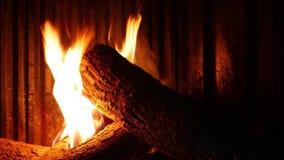 Timelapse древесины огня горя в камине сток-видео