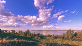 Timelapse луга банка и травы океана на времени лета или осени Одичалая природа, морское побережье и сельское поле акции видеоматериалы
