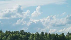 Timelapse облаков лета пушистых видеоматериал