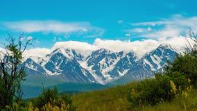 Timelapse 云彩在背景中盖积雪的山 灌木在前景的风震动 股票录像