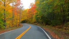 TimeLapse -驾驶在树下和在完整色彩的曲线附近在秋天期间在佛蒙特 影视素材