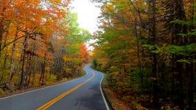 TimeLapse -驾驶在树下和在曲线附近,树改变肤色在秋天期间在佛蒙特 股票录像