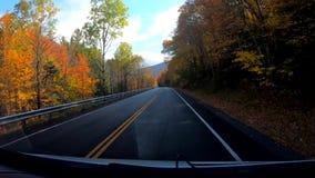 TimeLapse 10X -驾驶在树和曲线下在高峰颜色在秋天期间在佛蒙特 影视素材