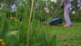 Timelapse :女孩割的草坪 影视素材
