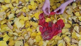 Timelapse Achtergrond in de vorm van hart van de herfstbladeren stock videobeelden