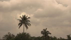 Timelapse antes de la tormenta de la lluvia metrajes