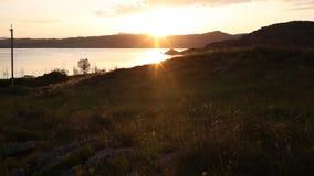 Timelapse av den guld- solnedgången över sjön Muskoka lager videofilmer
