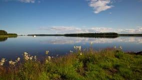 Timelapse av en svensk sjö på en härlig sommardag stock video