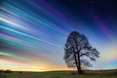 Timelapse av färgrik solnedgånghimmel med stjärnor över grönt fält royaltyfri bild