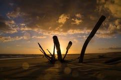 Timelapse av soluppgång på den Raibow stranden, Queensland, Australien arkivfilmer