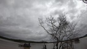 Timelapse b-roll dramatic dark cloudy Sky in rainy day. Lake view skies with dying old tree's branches in stormy clouds Backgrou