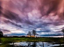 Timelapse-Bewegung von Sturmwolken bei Sonnenuntergang mit Schattenbild von zwei Bäumen Stockbilder