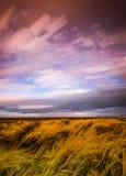 Timelapse-Bewegung von Wolken über Marschland und Gräsern Stockfoto