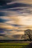 Timelapse-Bewegung von Wolken bei Sonnenuntergang mit Schattenbild des Baums und der weit reichenden szenischen Landschaft Lizenzfreies Stockbild