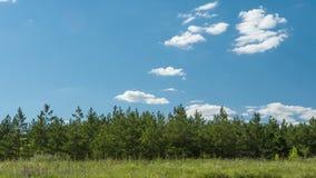 Timelapse chmurnieje nad lasowymi białymi puszystymi chmurami rusza się w niebie zbiory
