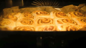 Timelapse of a cinnamon bread rising in the oven stock video