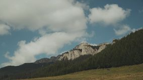 Timelapse of the clear blue sky with clouds in summer, landscape in mountains.Pine forest, mountains,clear sky.