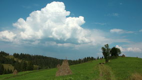 Timelapse of clouds and beautiful green meadow stock video