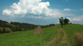 Timelapse of clouds and beautiful green meadow. Video without birds stock footage