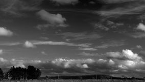 Timelapse of clouds moving from right to left over a countryscape with trees and electric poles, cumulus and cirrus. Timelapse of clouds - cumulus and cirrus stock video