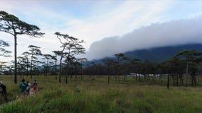 Timelapse, cloudscape после дождя в луге глуши, национальном парке Phu Soi Dao, провинции Таиланде Uttaradit сток-видео
