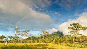 Timelapse, cloudscape en regenboog na regen in regenwoud, Thailand stock footage