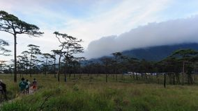 Timelapse, cloudscape na regen in wildernisweide, Phu Soi Dao National Park, Uttaradit-Provincie Thailand stock video