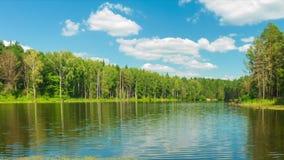 Timelapse completo di HD, bello lago della foresta e cielo blu al giorno soleggiato archivi video