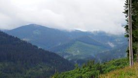 Timelapse da mola nas montanhas video estoque
