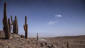 Timelapse in de Atacama-Woestijn stock video