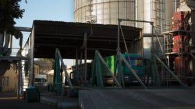 Timelapse de descargar los camiones del grano en el elevador en la elevación del descargador hidráulico de la plataforma Transbor metrajes