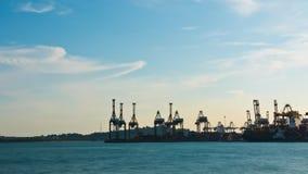 Timelapse de las grúas del envase/de pórtico en el puerto/el astillero - 4k de Singapur metrajes