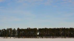 Timelapse de las nubes del bosque del invierno que vuela metrajes