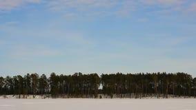 Timelapse de las nubes del bosque del invierno que vuela almacen de metraje de vídeo