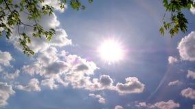 Timelapse de nuvens moventes rápidas no céu azul brilhante com ramos de árvore Tiro estático video estoque