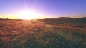 timelapse de pré de montagne de 4K UHD à l'été Nuages, arbres, herbe verte et mouvement de rayons du soleil Photographie stock