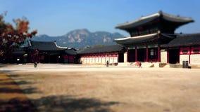 Timelapse de visitantes que caminan en el palacio de Gyeongbokgung