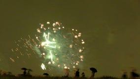 Timelapse dei fuochi d'artificio sopra la baia stock footage