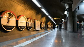 Timelapse dei pendolari, passeggeri del treno stock footage
