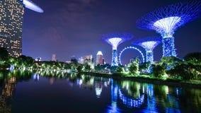 Timelapse del aviador de Singapur con supertree almacen de metraje de vídeo