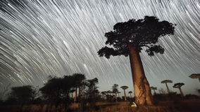 Timelapse del cielo estrellado almacen de metraje de vídeo