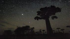 Timelapse del cielo estrellado almacen de video