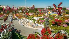 Timelapse del giardino di miracolo del Dubai con oltre 45 milione fiori in un giorno soleggiato, Emirati Arabi Uniti archivi video