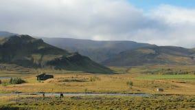 Timelapse del paisaje islandés del campo, nubes se está moviendo sobre las montañas, dos caballos almacen de video