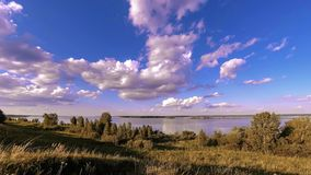 Timelapse del prato della banca e dell'erba dell'oceano al tempo di autunno o di estate Natura selvaggia, costa di mare e campo r stock footage