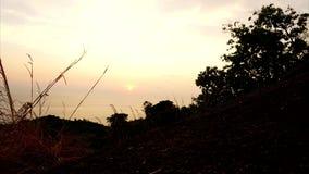 Timelapse del sole di giallo tramonto sopra l'orizzonte Vista del mare, erba con gli alberi video d archivio
