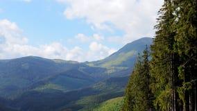 Timelapse della primavera in montagne stock footage
