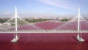 TimeLapse der Schrägseilbrücke über der Petrovsky-Fahrrinne des Westhochgeschwindigkeitsdurchmessers St Petersburg stock video footage